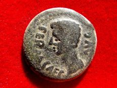 Roman Empire - Augustus (27 B.C. - 14 A.D.) bronze semis (9,80 grs., 25 mm.) minted in Colonia Patricia, ancient Baetica provincia in Hispania (actual Cordoba). Sacrificial implements.