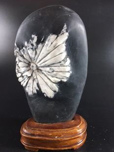 Porphyrite China on wooden base - 17 cm - 600 g