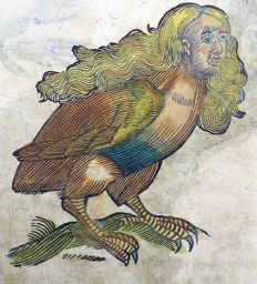 Conrad Gesner (1516-1565) - One leaf 2 woodcuts on Mythological Animal - Harpy; Hazel Grouse- 1669