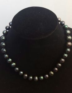 Silver 925 - Fresh water cultured black colour pearls - Length: 46 cm