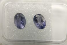 Couple Iolite Blue / Colorless 1.12 ct    No Reserve Price