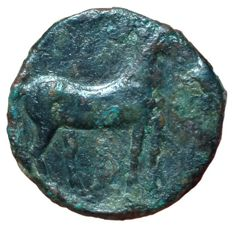 The Greek Antiquity - Bruttium, Carthage Occupation, Hannibal? c. 215-212 - Æ Bronze, (Bronze, 24mm, 9,38g.), Time of Siculo-Punic War - Head of Tanit-Persephone / Horse - cf. SNG Cop. 210 - Rare
