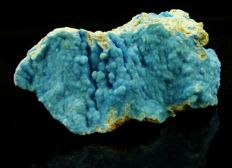 Beautiful Blue Botryoidal Hemimorphite on matrix - 6.8 x 3.1 x 2.7 cm - 50 gm