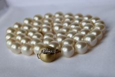 Necklace with real, shiny, Japanese Akoya sea salty pearls with beautiful rosé luster. 14kt ball lock with small diamonds H / SI. Pearls in excellent condition.