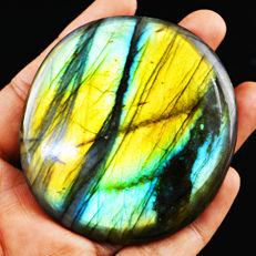 Premium Big Top Lightning Flash Labradorite -67x61x07 mm - 325 ct