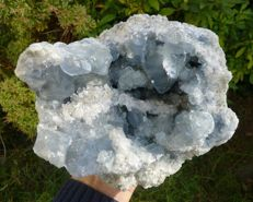 Fine and large geode of celestine - 17 x 15 - 4628 g