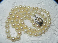 Pearl necklace Akoya pearls max. approx. Ø 6.8 mm 585 gold