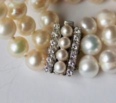 Beautiful 3-row bracelet with ivory-white Japanese Akoya pearls (78) and high quality 14kt. gold lock with G/VVS ca. 0.36Ct.