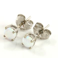 14k White Gold Stud Earrings Set with 0.20 ct Created Opal - *no reserve*