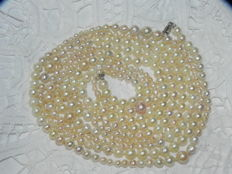 Pearl necklace Akoya pearls max. approx. Ø 7.7 mm