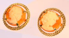 Gold shell cameo stud earrings from the sixties - No reserve price!