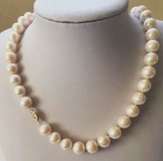 Pearl necklace, large salt water pearls. **No minimum price**.