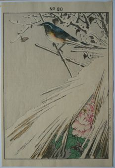 "Gorgeous woodcut by Imao Keinen (1845-1924) - 'A Syberian Red-flanked Bluetail and a snowy peony' - ""Keinen kacho gafu"" - Japan - 1892"