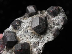 Large perfect almandine garnet crystals on schist matrix - 16x9x4 cm - 980 g