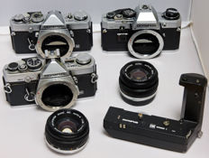 Lot of Olympus OM cameras for the collector or handy repairman