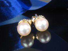 Gold (14 kt/585) Earrings with Akoya Pearls (Cultured Akoya Pearl: 6 × 6 mm)