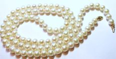 Vintage 1960s - High quality 97 pcs. large (8 x 9 mm) Akoya Pearl 910 mm long Necklace with Hallmarked 14k yellow Gold clasp