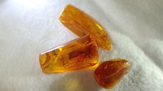 Baltic amber with insects and inclusions, 18-30 mm (3)