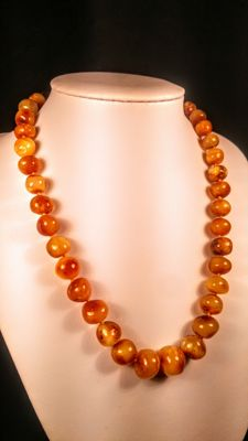 Vintage 100% natural egg yolk colour Baltic Amber necklace, 26 grams