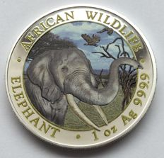 Somalia: 100 shillings 2018 - Elephant - 1 oz of silver - Colour edition
