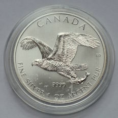 Canada - 5 Dollars 2014 - Eagle - 1 oz 999 Silver