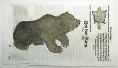 Conrad Gesner (1516-1565) - One leaf with 3 large woodcuts - Brown Bear, Flying Squirrel - 1669