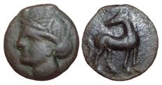 Greek Antiquity - Zeugitania, Carthage, time of the Second Punic War, Bruttium Locri mint c. 215-205 BC - Æ Half Unit (Bronze, 21/20mm, 5,28g.), Posthumous issue? - Head of Tanit / Horse - Rutter HN Italy 2029; SNG Cop. 349 - Rare