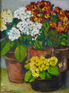 Dorothy Pulford (20th century) - Still life of potted plants and a plant in a jug