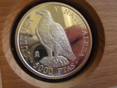 Spain - 5000 pesetas - 8 reales - Culture and nature - (imperial eagle) - Year 1994 - Silver 925/1000 - rare