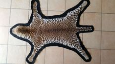 Antique taxidermy - Leopard skin - Panthera pardus - 145  x 112cm