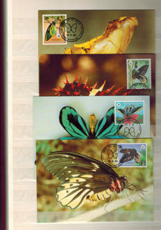 Thematic collection - Collection on Butterflies