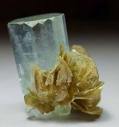 Top Quality Terminated Aquamarine Crystal with Mica - 35 x 19 x 21 mm - 29g