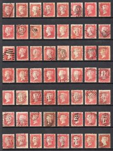 Great Britain Queen Victoria 1856/1858 -Stanley Gibbons 36/41 Collection of 248 1d Red Stars on Four Stock Pages
