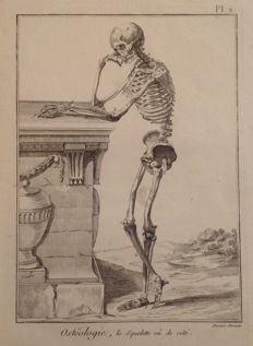 "4 plates ""Osteologie"" and ""Myologie"" -  engraved by Deseve (direxit) - 1805"
