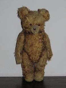 Teddy bear PETZ - Germany