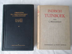 Lot with 2 books on the Flora in the Dutch East - 1931/1948