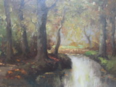 Henri Endlich (20th century) - Bosbeek in the herfst