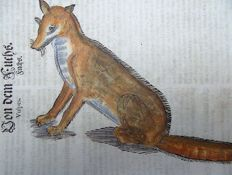 One leaf with a large sized wood block - Conrad Gesner (1516-1565) - Red Fox - 1669
