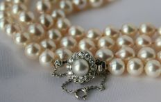2 -row high  ca. 6,9-7,4 mm ivory-white pearl necklace with excellent silvery lustre. clasp with old European cut  diamonds approx. 0.80 ct