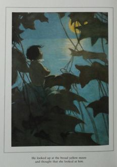 Charles Kingsley - The Water Babies. Illustrated by Jessie Willcox Smith - 1982