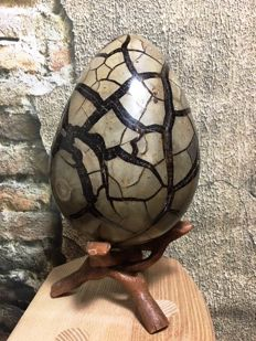 """Dragon egg"" Septarian egg with hatch - 19 cm - 3300 g"