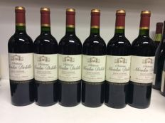 2007 Chateau Moulin Delille, Saint-Estephe, France , 6 bottles 0,75l