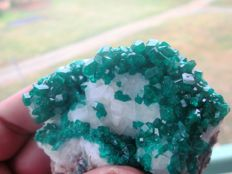 Fine Green Dioptase crystals on matrix - 7 x 5 cm - 146 g