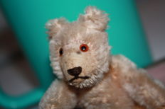 Steiff - small original teddy - early 50s - unique piece fully moveable