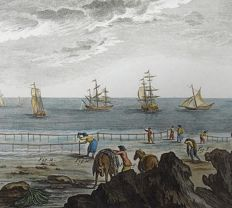 3 x Panckoucke (1736-1798) - hand coloured copper engraving - Sea Fishing, Nets, Boats, Fish - 1793
