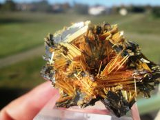 Golden Rutile on Hematite - Top Quality - 5 x 4 cm - 82 g