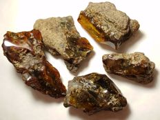 Natural Baltic Amber Lot - 6-10.5cm - 225 gr. (5)