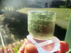 Apatite from Portugal - rare superb crystal - 4 x 3.5 cm - 91 g