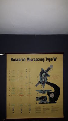 School poster microscope Carl Zeiss