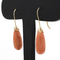 18 kt (750/000) yellow gold - Earrings - Pacific natural coral - Height: Height: 35 mm
